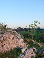 - Widok z Góry Zamkowej na największy na Jurze rezerwat przyrody - Sokole Góry